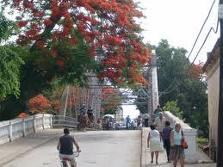 20101208220957-puente.jpg