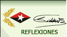 20110315143925-reflexiones-fidel-esp-g.jpg